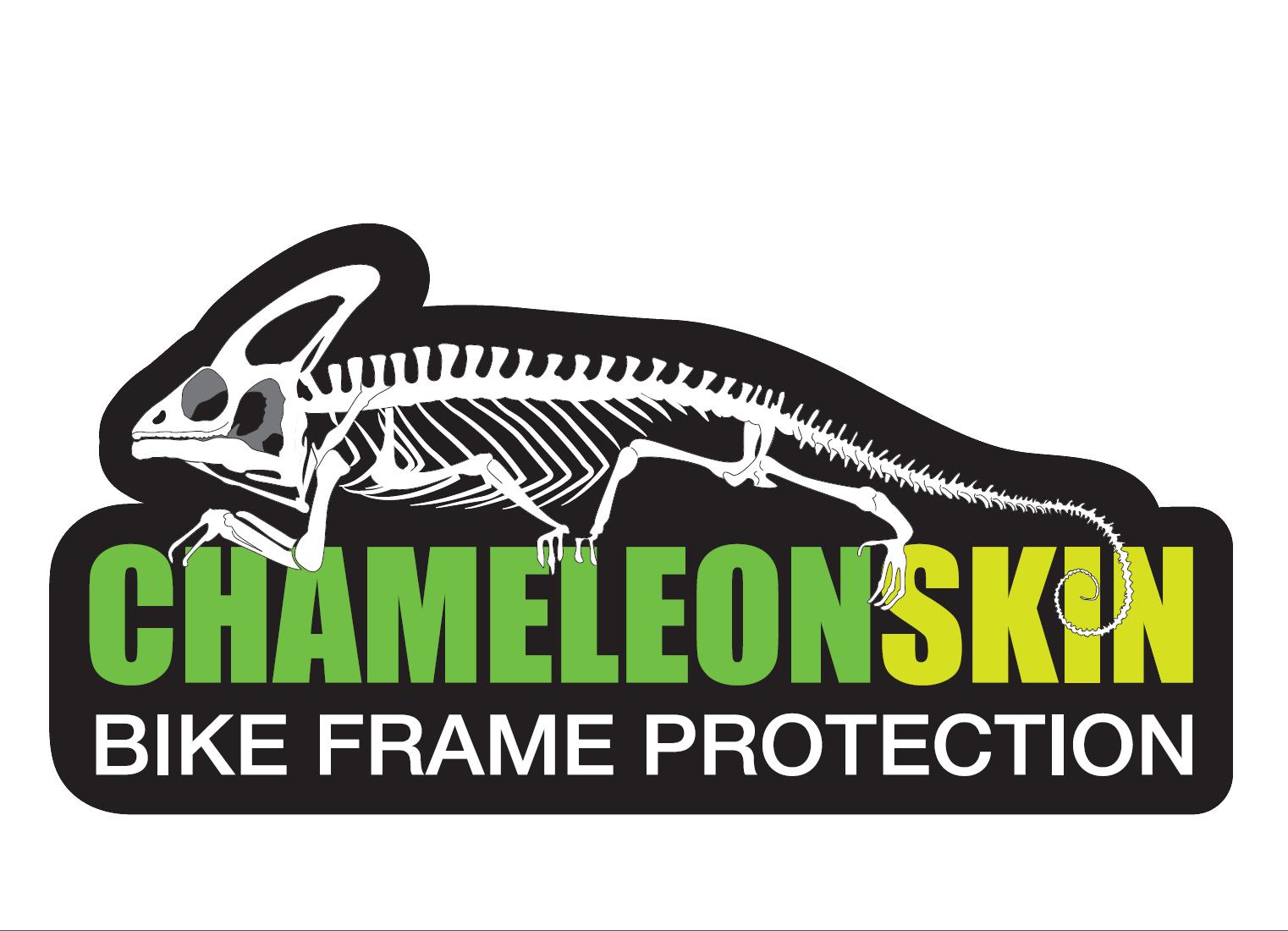 Chameleon Skin