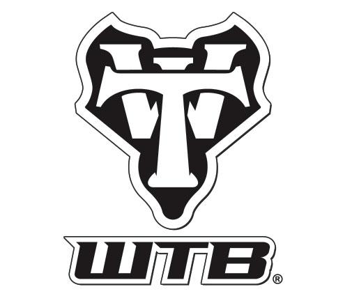 WTB Tires